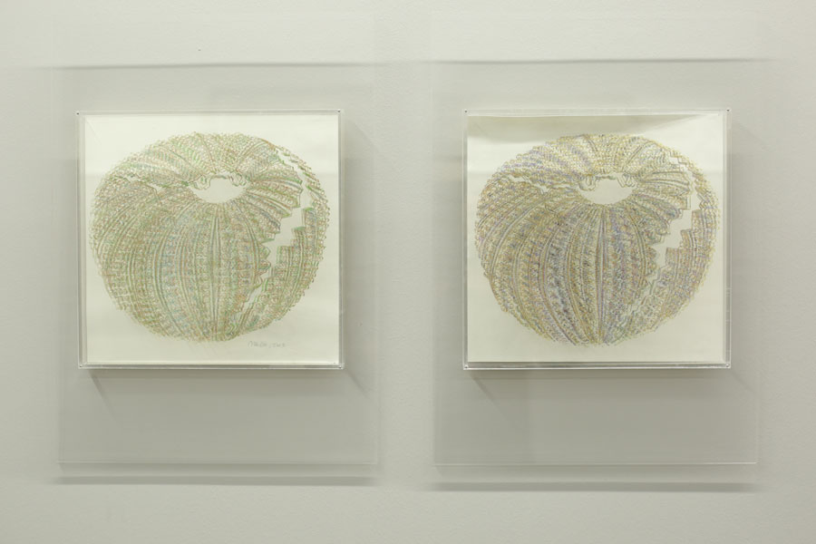 "Melike Abasıyanık Kurtiç, ""Sea Urchin"", mixed media, each 50x36 cm, 2013 [The World Exists to End Up in a Poem]"